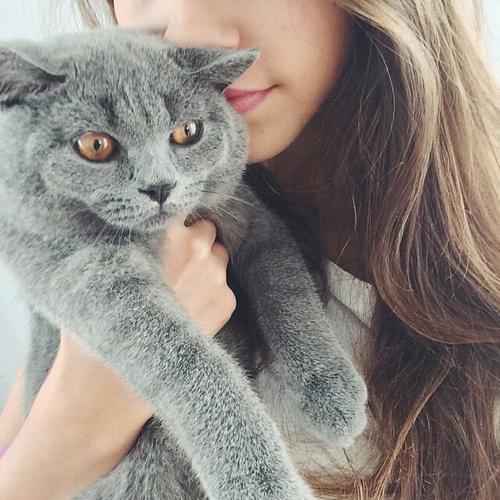 Фото и картинки на аву животные и звери - самые красивые и классные 16