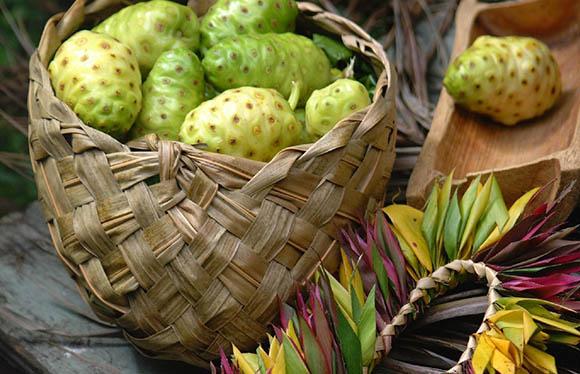 10 самых полезных свойств фруктов Нони - польза для организма 2
