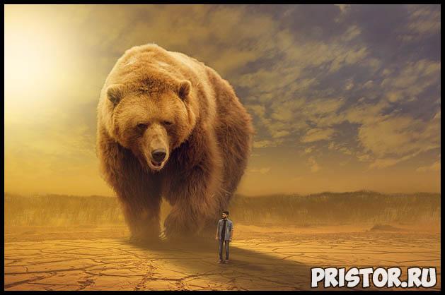Как спастись от медведя в лесу Как необходимо вести себя 1
