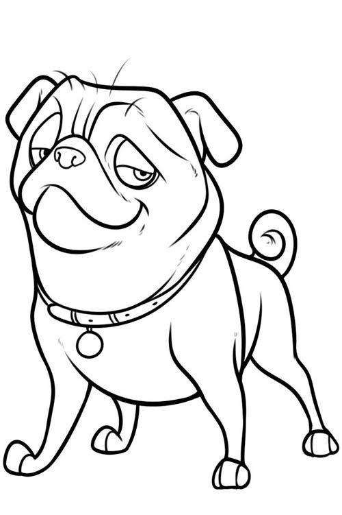 Картинки для срисовки Год собаки - самые прикольные и красивые 7