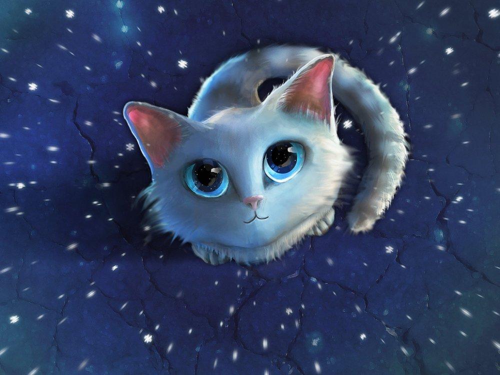 Кот и кошка картинки для детей - самые прикольные и интересные 13