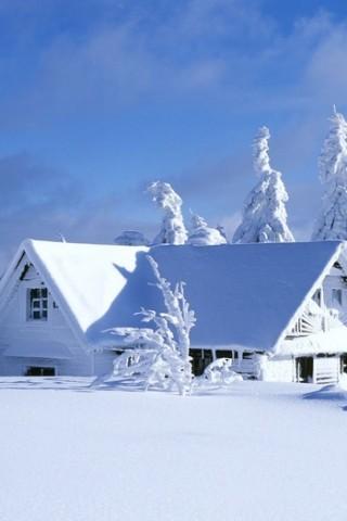Красивые зимние картинки на телефон - самые интересные, скачать 2018 6