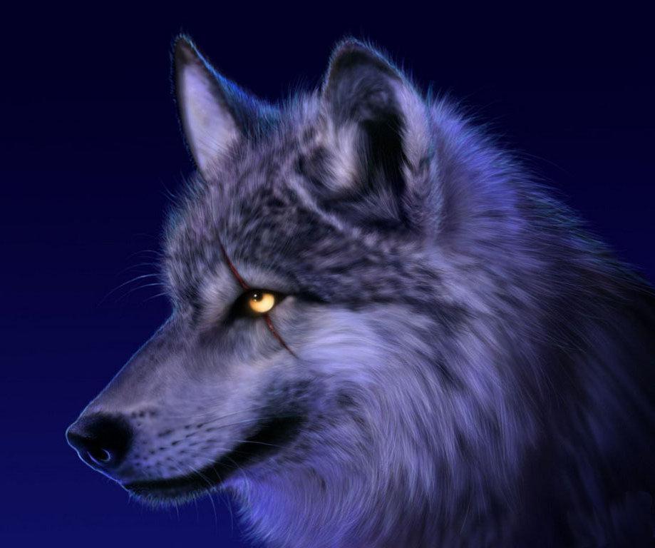 Красивые и прикольные картинки волка на аватарку - скачать бесплатно 1