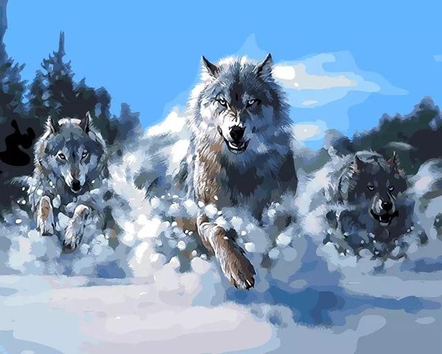 Красивые и прикольные картинки волка на аватарку - скачать бесплатно 9