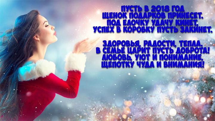 Красивые и удивительные стихи на Новый год 2018 - подборка 5
