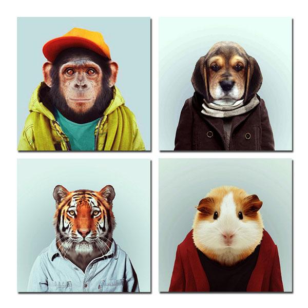 Прикольные и смешные изображения животных - самые веселые №10 5