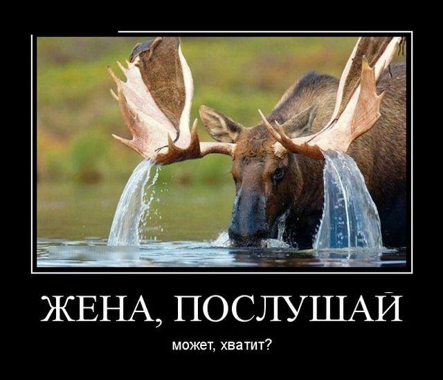 Ржачные и прикольные новые демотиваторы - подборка недели №9 5
