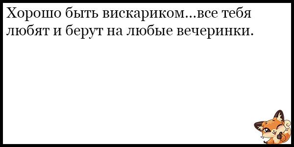 Смешные и ржачные анекдоты про любовь - прикольная подборка №69 11
