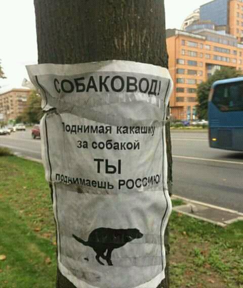 Смешные русские, которые обязательно поднимут настроение - подборка №12 12