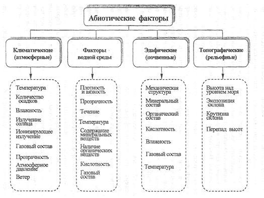 Абиотические факторы среды обитания и их влияние на живые организмы 1