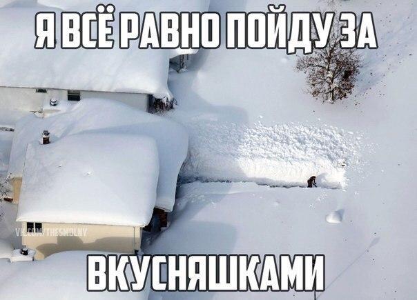 Веселые и смешные картинки про зиму и снег - забавная подборка №23 10