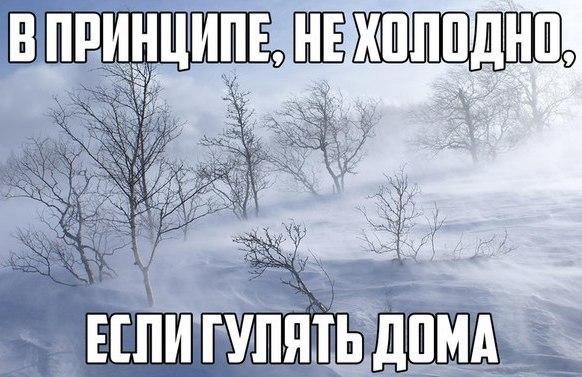 Веселые и смешные картинки про зиму и снег - забавная подборка №23 16