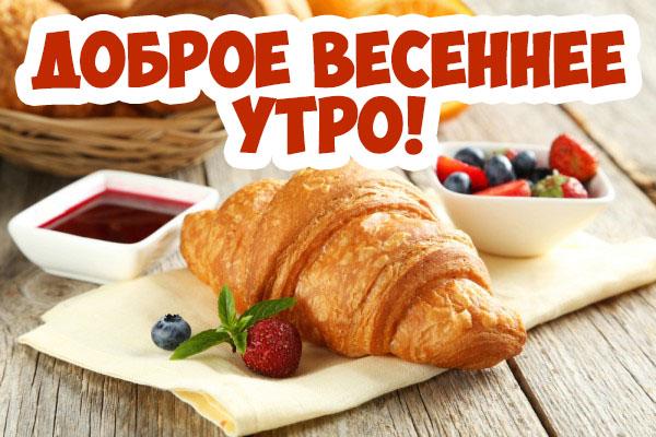 Доброе весеннее утро - красивые и прикольные картинки, открытки 8