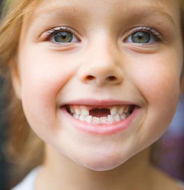 Какие зубы меняются у детей - выпадение молочных зубов и их смена 2