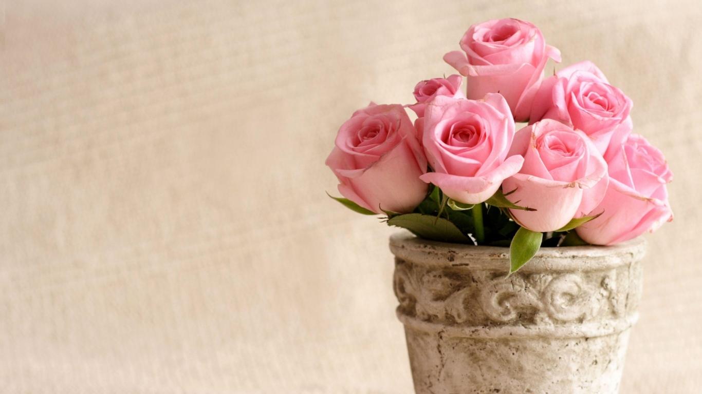 Красивые картинки цветов на рабочий стол - скачать подборка №3 9