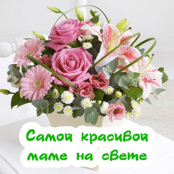 Фото красивыхобоев с цветами