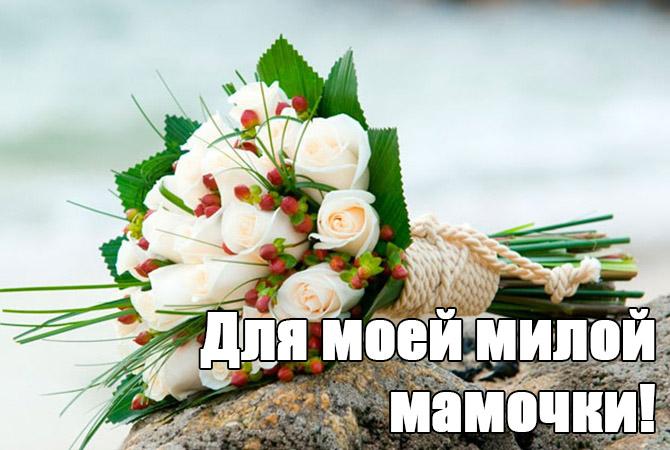 Самые длинные ресницы в россии 73