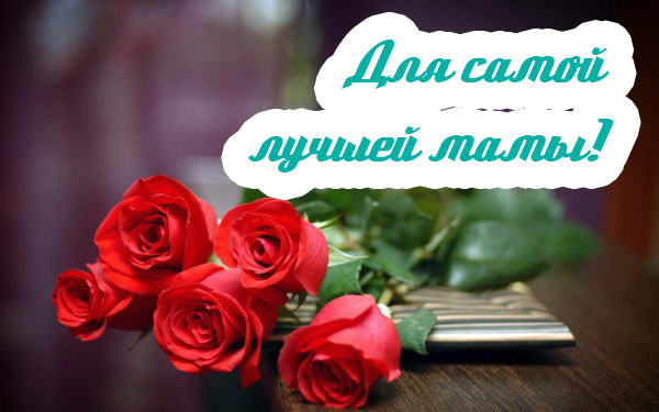 Гигантские цветы из бумаги мастер класс с пошаговым 67