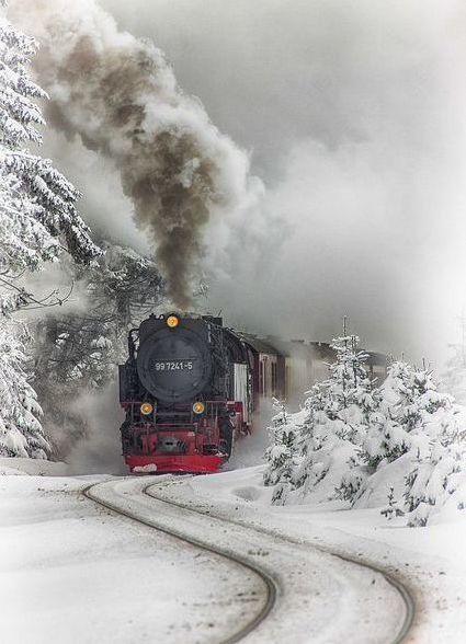 Скачать картинки про зиму и снег - самые красивые и прикольные 11