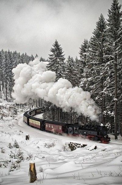 Скачать картинки про зиму и снег - самые красивые и прикольные 6