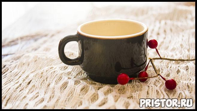 Уникальные свойства белого чая - чем полезен этот напиток 2
