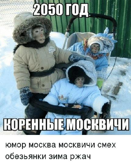 Веселые и смешные картинки про зиму - самая забавная подборка №36 4