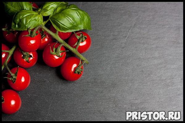 Выращиваем помидоры «черри» в домашних условиях - уход и высадка 3