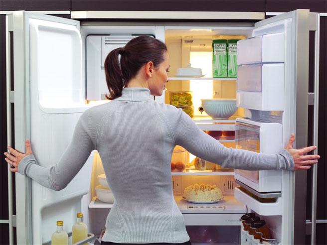 Как убрать запах в холодильнике в домашних условиях - лучшие способы 1