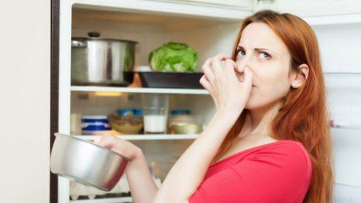 Как убрать запах в холодильнике в домашних условиях - лучшие способы 2