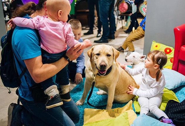 Канистерапия - реабилитация с помощью собак, противопоказания 2
