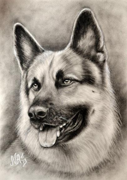 Красивые и прикольные нарисованные картинки животных - лучшая подборка 5