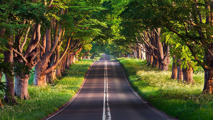 Красивые пейзажи природы фото и картинки - самые удивительные 12
