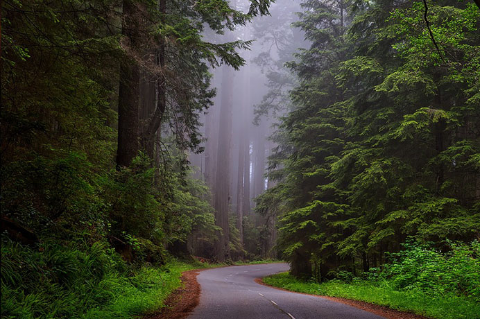 Красивые пейзажи природы фото и картинки - самые удивительные 2