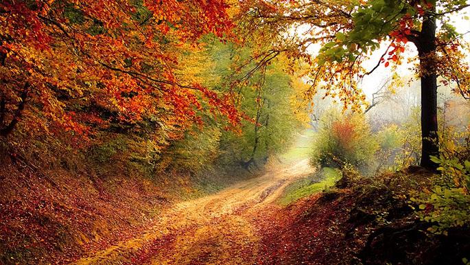 Красивые пейзажи природы фото и картинки - самые удивительные 21