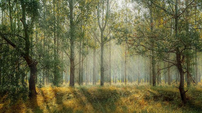 Красивые пейзажи природы фото и картинки - самые удивительные 6