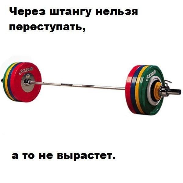 Прикольные и смешные картинки про спорт и физкультуру - подборка №40 12