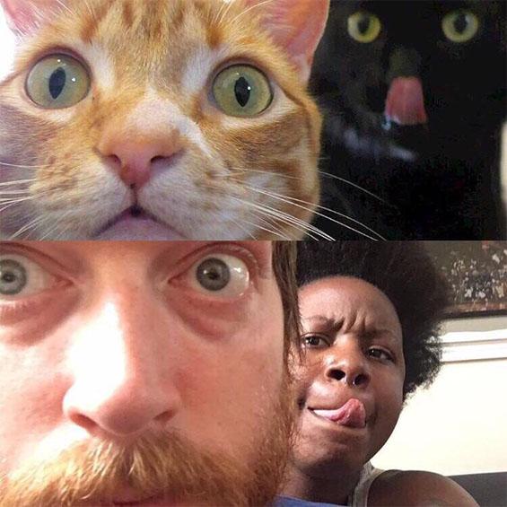 Самые смешные картинки и фото животных до слез за февраль 2018 №34 8