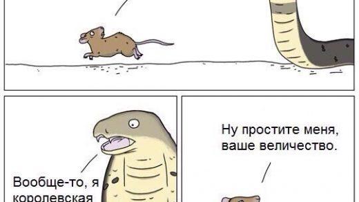 Смешные и прикольные комиксы до слез 2018 - лучшая подборка №1 7