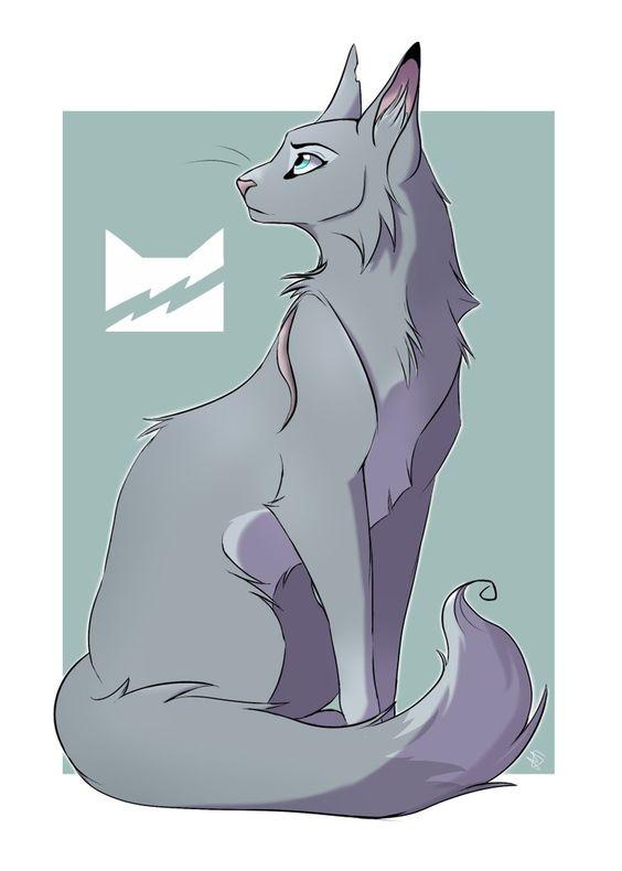 Картинки кошек и котят для срисовки - очень красивые и прикольные 18
