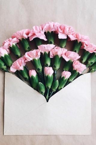 Картинки на телефон букеты и цветы - самые красивые и удивительные 6