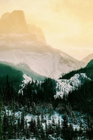 Картинки на телефон природа и пейзажи - скачать бесплатно №6 7