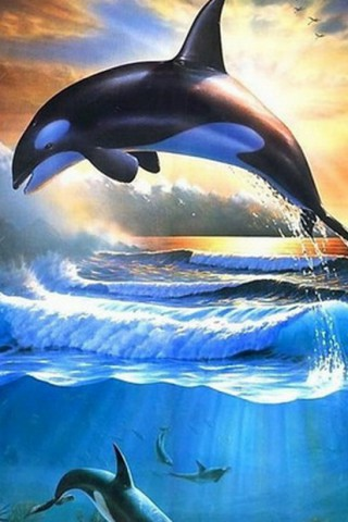 Красивые картинки воды и водного мира на телефон - лучшие заставки №10 16