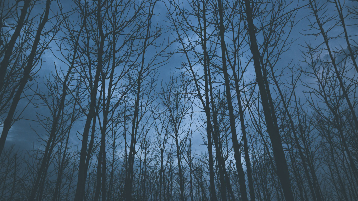 Бесплатно картинки с добрым утром природа картинки 7