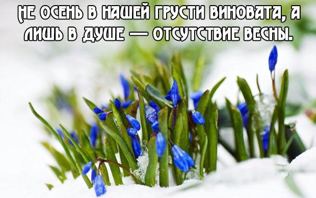 Красивые фразы и высказывания про весну - удивительная подборка 8