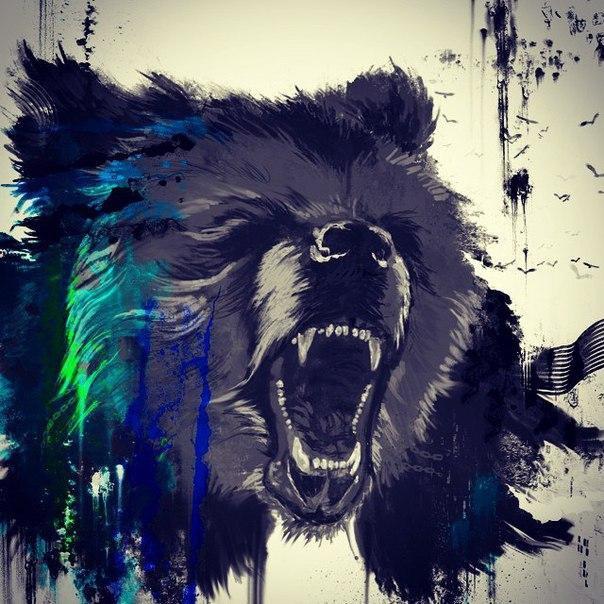Медведь на картинках и фотках - очень красивые и интересные 11