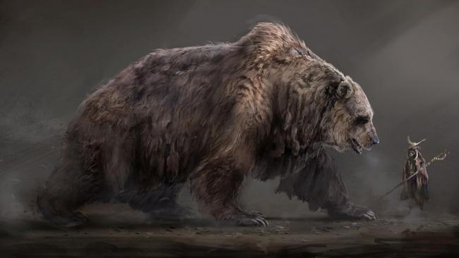 Медведь на картинках и фотках - очень красивые и интересные 18
