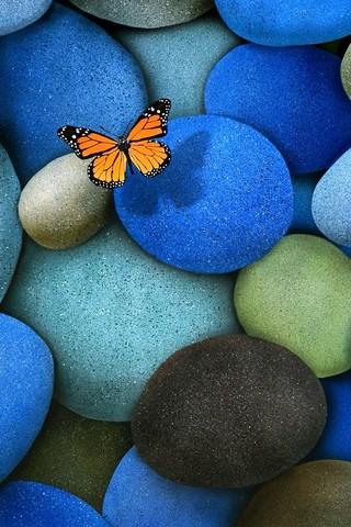 Прикольные и красивые картинки на телефон бабочки - подборка 1