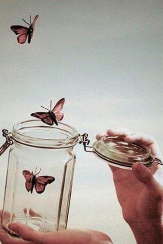 Прикольные и красивые картинки на телефон бабочки - подборка 2