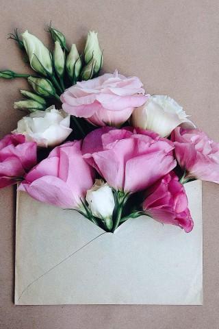 Прикольные и красивые картинки цветов на телефон - скачать бесплатно №2 5