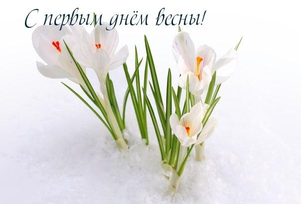 С Первым Днем Весны - красивые и прикольные картинки, скачать 5